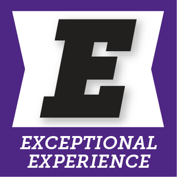 E for exceptional experience button